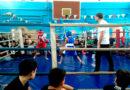 Первенство Хвалынского муниципального района по боксу